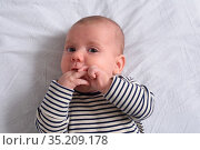 The baby who puts his hand in his mouth to suck his finger. Стоковое фото, фотограф Josep Curto / easy Fotostock / Фотобанк Лори