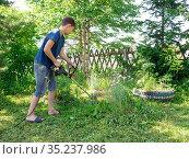 Мальчик 11 лет, косит лужайку электрической косой возле деревьев, во дворе дома, в солнечный летний день. Стоковое фото, фотограф Светлана Попова / Фотобанк Лори