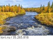 Sjaunja river in autumn with colorfull birch trees, Gällivare county... Стоковое фото, фотограф Mats Lindberg / age Fotostock / Фотобанк Лори