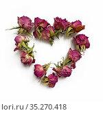 Сердечко из сухих розочек. Стоковое фото, фотограф Мария Кылосова / Фотобанк Лори