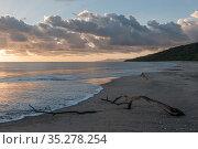 View of beach of Maria Magdalena island. Islas Marias Archipelago, Marias Biosphere Reserve, Mexico. Стоковое фото, фотограф Francisco Marquez / Nature Picture Library / Фотобанк Лори