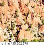 Dades valley in atlas moroco africa ground tree and nobody. Стоковое фото, фотограф Zoonar.com/lkpro / easy Fotostock / Фотобанк Лори