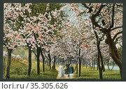 Europa, Deutschland, Pfingstpostkarte, mit einer farbigen Zeichnung... Редакционное фото, фотограф Historisches Auge Ralf Feltz / age Fotostock / Фотобанк Лори