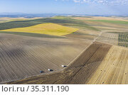 The Campiña Cordobesa, the fertile rural area south of the town of... Стоковое фото, фотограф Thomas Dressler / age Fotostock / Фотобанк Лори