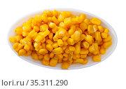 Grains boiled corn on plate. Vegetarian ingredient. Стоковое фото, фотограф Яков Филимонов / Фотобанк Лори
