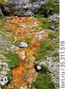 Barros de Chaño (Las Cuevas) hot springs. Lauca National Park, Norte... Стоковое фото, фотограф J M Barres / age Fotostock / Фотобанк Лори