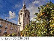 Torre del Miquelete, Plaza de la reina, Valencia, Comunidad Valenciana... Стоковое фото, фотограф Javier Larrea / age Fotostock / Фотобанк Лори