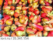 Rote und gelbe Birnen zum Verkauf auf einem Markt. Стоковое фото, фотограф Zoonar.com/elxeneize / easy Fotostock / Фотобанк Лори