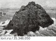 Islet of sea lions gulf of San Francisco, California, USA. United... Редакционное фото, фотограф Jerónimo Alba / age Fotostock / Фотобанк Лори