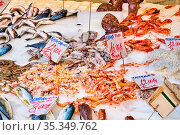 Fisch und Meeresfrüchte zum Verkauf auf einem Markt in Neapel, Italien. Стоковое фото, фотограф Zoonar.com/elxeneize / easy Fotostock / Фотобанк Лори