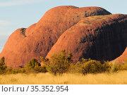 Uluru / Ayers Rock. Uluru-Kata Tjuta National Park, Northern Territory, Australia. 2008. Стоковое фото, фотограф Enrique Lopez-Tapia / Nature Picture Library / Фотобанк Лори