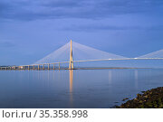 Pont de Normandie / Bridge of Normandy, cable-stayed road bridge over the river Seine linking Le Havre to Honfleur, Normandy, France. August 2020. Стоковое фото, фотограф Philippe Clement / Nature Picture Library / Фотобанк Лори
