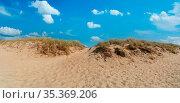 Zugang durch Düne am Ostsee Strand als Panorama Header mit blauem... Стоковое фото, фотограф Zoonar.com/Robert Kneschke / age Fotostock / Фотобанк Лори