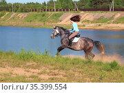 Young girl riding fast on a gray horse. Стоковое фото, фотограф Филатова Ирина / Фотобанк Лори