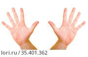 Hand zeigt zehn Finger. Стоковое фото, фотограф Zoonar.com/Robert Kneschke / age Fotostock / Фотобанк Лори
