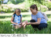Mother assisting her daughter to sketching at nature, an adult woman and pre teen girl sitting in green grass. Стоковое фото, фотограф Кекяляйнен Андрей / Фотобанк Лори