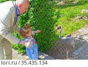 Дедушка показывает маленькой внучке даурского журавля в зоопарке. Стоковое фото, фотограф Ирина Борсученко / Фотобанк Лори