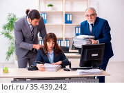 Two male and one female employees working in office. Стоковое фото, фотограф Zoonar.com/Elnur Amikishiyev / age Fotostock / Фотобанк Лори
