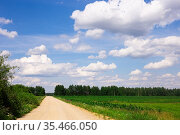 landscape with road going into perspective, green fields and blue sky with cumulus clouds. Стоковое фото, фотограф Татьяна Яцевич / Фотобанк Лори