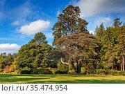 Landscape in Powerscourt park in autumn, Ireland. Стоковое фото, фотограф Zoonar.com/Boris Breytman / easy Fotostock / Фотобанк Лори
