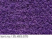 Ultra violet or purple carpet texture backdrop. Warm wool colored... Стоковое фото, фотограф Zoonar.com/Ruslan Gilmanshin / easy Fotostock / Фотобанк Лори