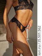 Hot brunette in black sexy lingerie, back view. Стоковое фото, фотограф Tryapitsyn Sergiy / Фотобанк Лори