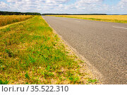road going into perspective, yellow fields and blue sky with cumulus clouds. Стоковое фото, фотограф Татьяна Яцевич / Фотобанк Лори