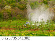 Spraying fruit trees with pesticides to protect against pests. Стоковое фото, фотограф Владимир Ушаров / Фотобанк Лори