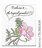 Vector card with tropical flower. EPS10 illustration. Стоковое фото, фотограф Zoonar.com/yunna gorskaya / easy Fotostock / Фотобанк Лори