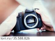 Hands of a photographer are touching a professional reflex camera... Стоковое фото, фотограф Zoonar.com/Patrick Daxenbichler / easy Fotostock / Фотобанк Лори