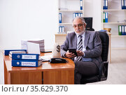 Old male businessman employee holding moneybag in the office. Стоковое фото, фотограф Elnur / Фотобанк Лори
