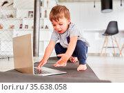 Kleiner Junge spielt mit einem Laptop Computer im Wohnzimmer auf ... Стоковое фото, фотограф Zoonar.com/Robert Kneschke / age Fotostock / Фотобанк Лори