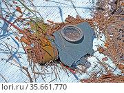 Старая резиновая маска противогаза среди лесного мусора. Стоковое фото, фотограф FMRU / Фотобанк Лори