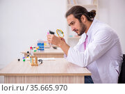 Young male chemist sitting at the desk in the classroom. Стоковое фото, фотограф Elnur / Фотобанк Лори