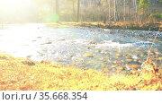 Dolly slider shot of the splashing water in a mountain river near forest. Wet rocks and sun rays. Horizontal steady movement. Стоковое видео, видеограф Александр Маркин / Фотобанк Лори
