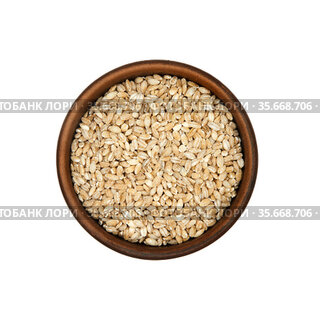 Pearl barley in clay bowl isolated on white background, top view