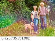 Paar Senioren wandert mit Hund im Sommer im Wald. Стоковое фото, фотограф Zoonar.com/Robert Kneschke / age Fotostock / Фотобанк Лори