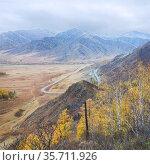Перевал Чике-Таман осенним пасмурным днем, Алтай. Стоковое фото, фотограф Инна Грязнова / Фотобанк Лори