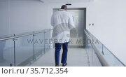Back view of african american male doctor walking through hospital corridor. Стоковое видео, агентство Wavebreak Media / Фотобанк Лори