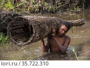 Dani tribe fisherman, with fish trap, Budaya village, Suroba, Trikora Mountains, West Papua, Indonesia. March 2018. Стоковое фото, фотограф Pete Oxford / Nature Picture Library / Фотобанк Лори