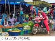 Drive-in Gemüseeinkauf mit dem Moped, Phosi Markt, Luang Prabang, ... Стоковое фото, фотограф Zoonar.com/GFC Collection / age Fotostock / Фотобанк Лори