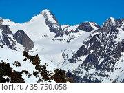 The Finsteraarhorn, the highest peaks in the Bernese Alps, Switzerland... Стоковое фото, фотограф Neil Harrison / age Fotostock / Фотобанк Лори
