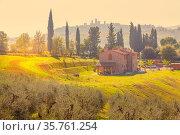 San Gimignano, Tuscany, Italy - October 25: Tuscany sunset panoramic... Стоковое фото, фотограф Zoonar.com/Nataliya_Nazarova{} / age Fotostock / Фотобанк Лори
