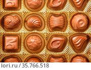 Closeup Of Variety Chocolate Pralines, Close Up Shot Of Chocolates... Стоковое фото, фотограф Zoonar.com/Alex Varlakov / age Fotostock / Фотобанк Лори