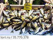 Fresh fish and seafoods on counter of Turkish market in Istanbul. Стоковое фото, фотограф Яков Филимонов / Фотобанк Лори