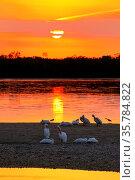 Sunset at Ding Darling Wildlife Refuge on Sanibel island, Florida. Стоковое фото, фотограф Zoonar.com/Don Mammoser / age Fotostock / Фотобанк Лори