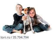 Portrait of a puppy purebred jack russel terrier and children on ... Стоковое фото, фотограф Zoonar.com/emmanuelle bonzami / age Fotostock / Фотобанк Лори