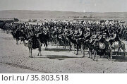 Ottoman soldiers mounted on camels. Редакционное фото, агентство World History Archive / Фотобанк Лори
