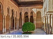 Patio de los Leones Alhambra Palace Granada Spain. Стоковое фото, фотограф Zoonar.com/Graham Mulrooney / age Fotostock / Фотобанк Лори