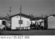 Living conditions among the migrant fruit workers, in a tourist camp near Belle Glade, Florida 19370101 by Dorothea Lange 1895-1965. Редакционное фото, агентство World History Archive / Фотобанк Лори